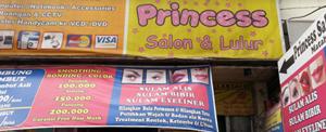 Princess Salon Beauty