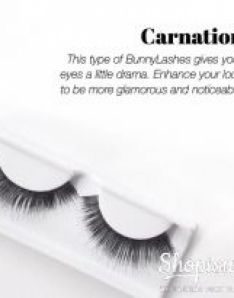 Bunny Lashes Carnation