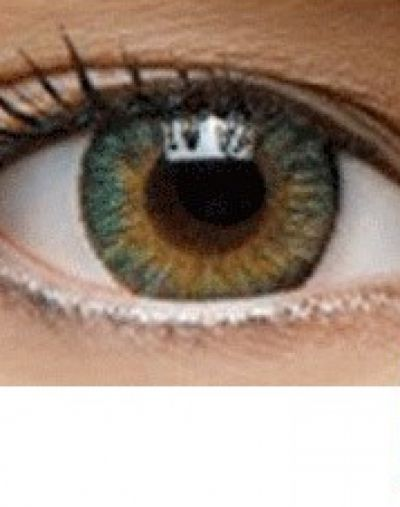 New Look Charm 3 tone color lens green
