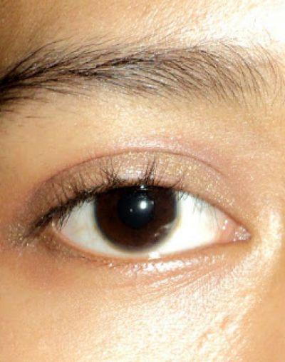 Viva Cosmetics Eye Shadow Cream