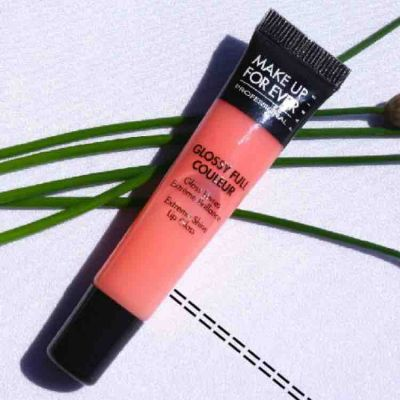 Make Up For Ever Glossy Full Couleur