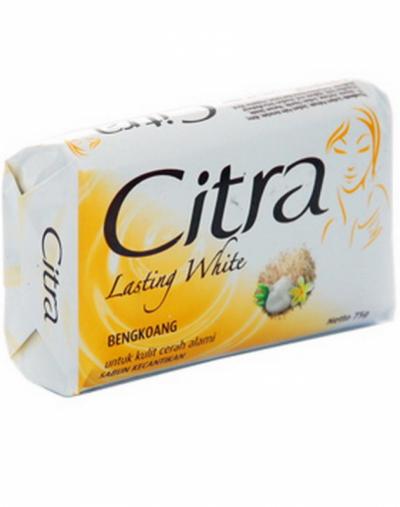 Citra Lasting White Sabun Kecantikan
