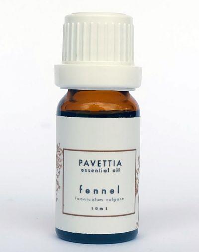 Pavettia Fennel - 100% Pure Essential Oil
